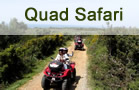 Quad Safari